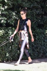 Alessandra Ambrosio Out dog walking in Brentwood