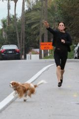 Courteney Cox's beloved dogs from busy Malibu traffic in dramatic rescue