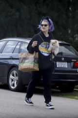 Kelly Osbourne Heads out for some grocery shopping in Los Angeles