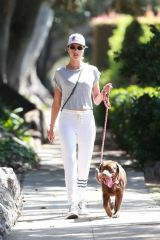 Alessandra Ambrosio Walking her dog in Santa Monica