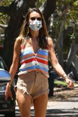 Alessandra Ambrosio Walking the dog in Santa Monica