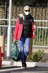 Denise Van Outen Seen shopping in Chelmsford