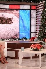 Alison Brie On the Ellen DeGeneres Show