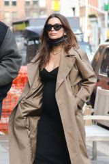 Emily Ratajkowski Seen walking her dog in New York City