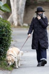Diane Keaton Seen walking her dog with a friend in Los Angeles