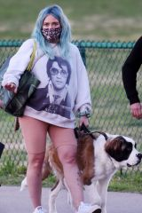 Hilary Duff Takes her dog for a walk at a park in Los Angeles