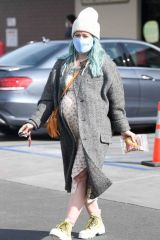 Hilary Duff At Trader Joes in LA