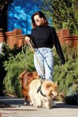 Aubrey Plaza Takes her dogs for a walk near her home in LA