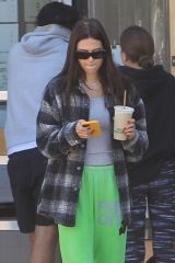 Amelia Gray Hamlin Grabs juice with friends in Hollywood