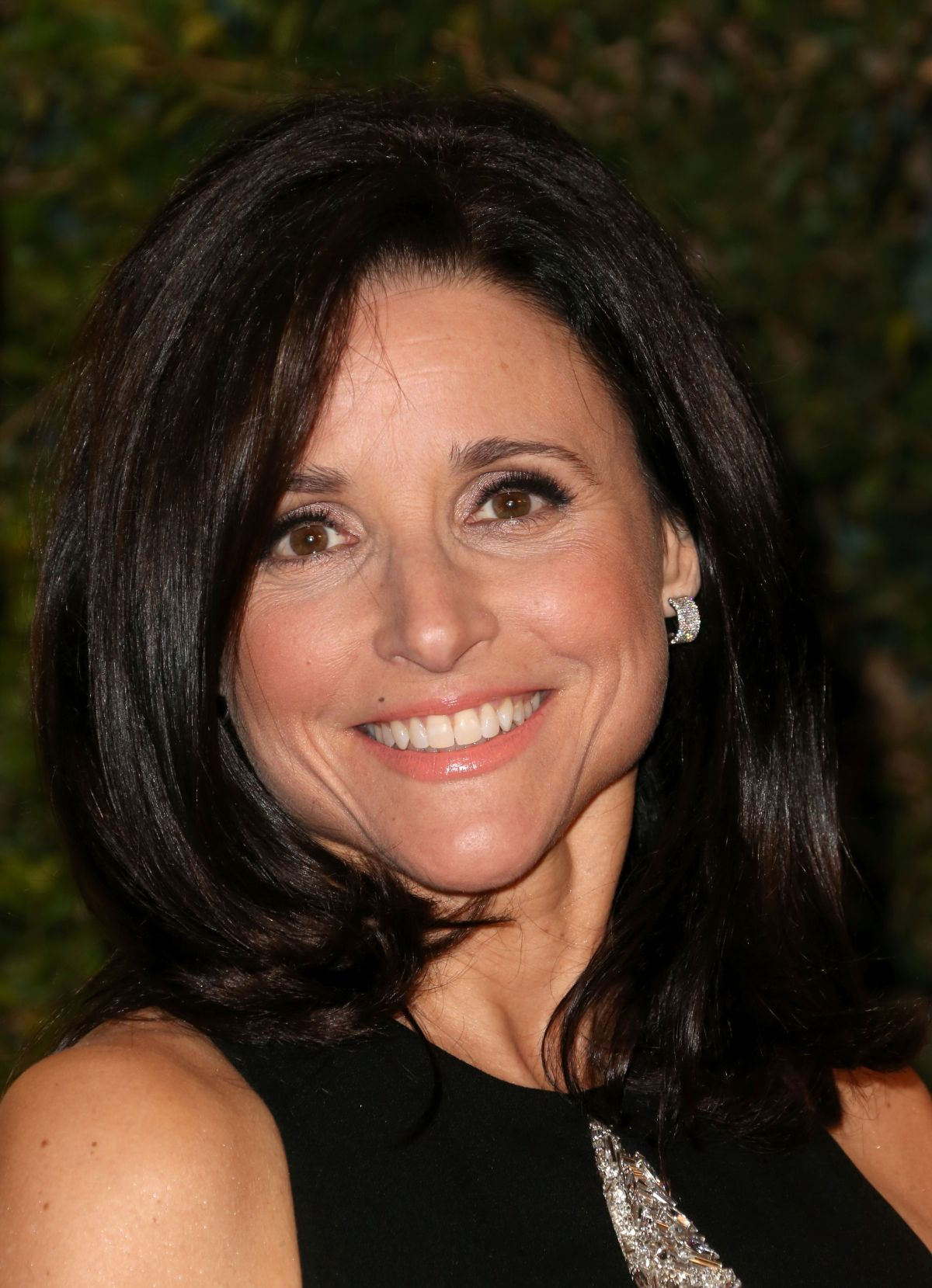 Julia Louis Dreyfus Body Weight Bra Size: Julia Louis-Dreyfus At The Academy Of Motion Picture Arts