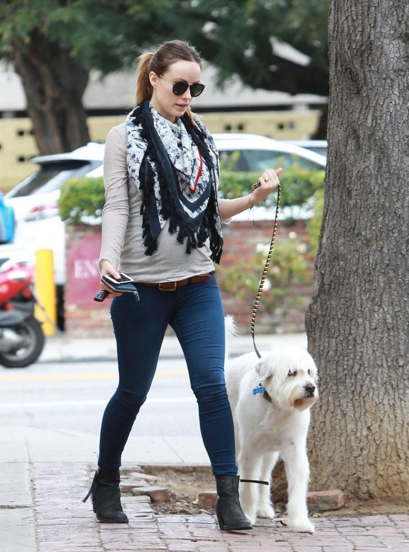 Olivia Wilde With Her Dog Paco In West Hollywood