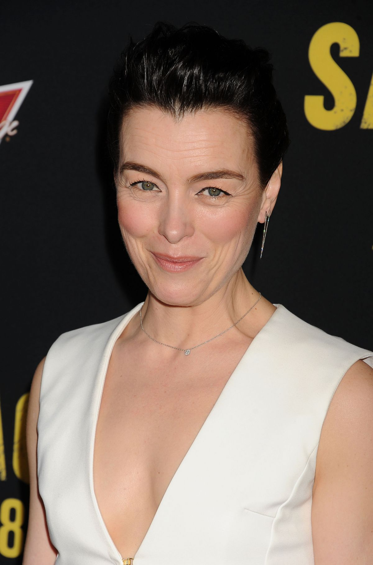 Olivia Williams Net Worth