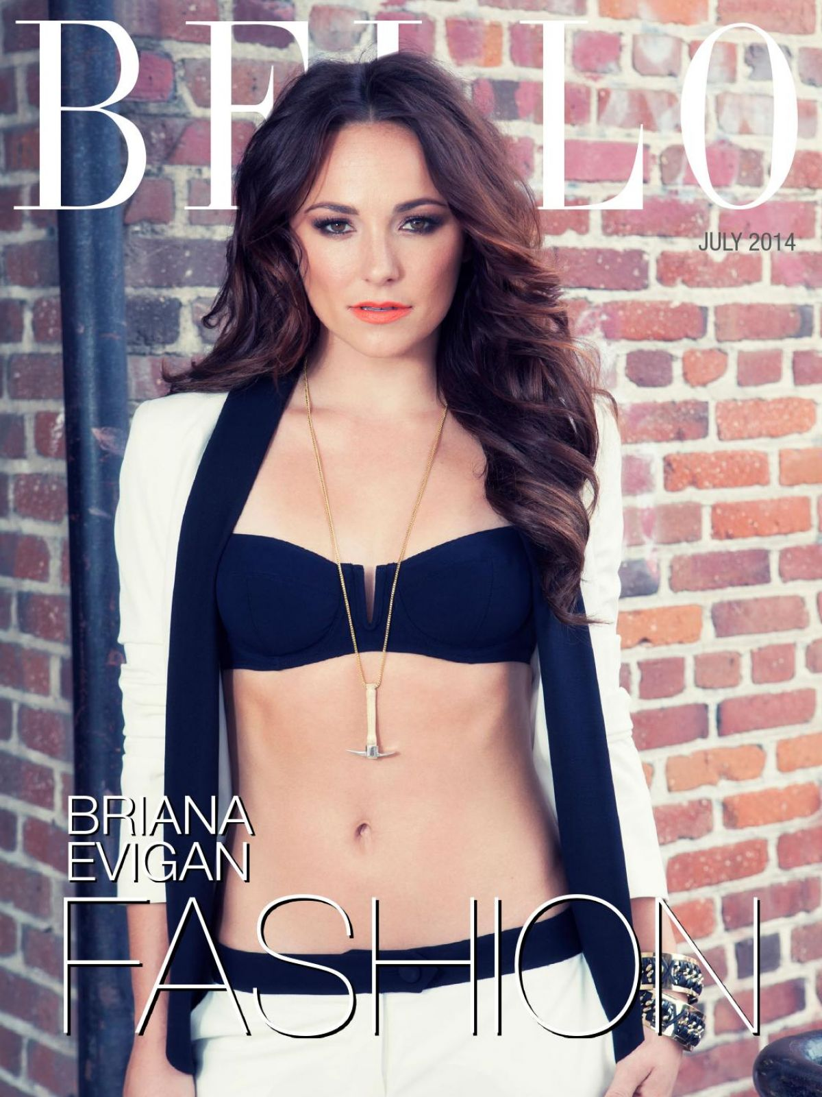 Young Briana Evigan nudes (93 foto and video), Topless, Bikini, Selfie, see through 2015