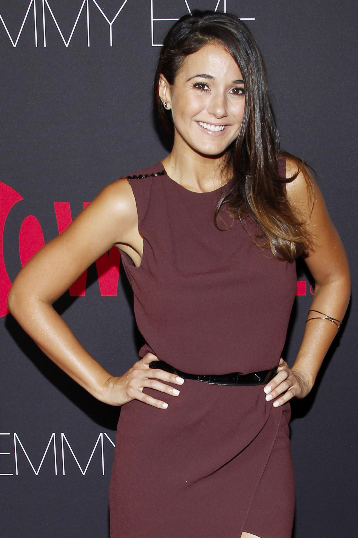Emmanuelle Chriqui At Showtime 2014 Emmy Eve Soiree ... Emmy Eve