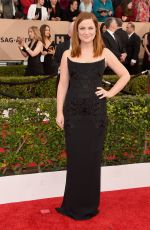 Amy Poehler At 22nd Annual Screen Actors Guild Awards at Shrine Auditorium In LA