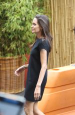 Angelina Jolie Arrives At The Premiere Of Kung Fu Panda 3 At The Chinese Theater In Hollywood