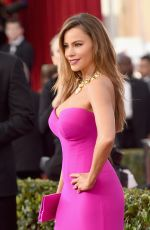 Sofia Vergara At 22nd Annual Screen Actors Guild Awards In Los Angeles