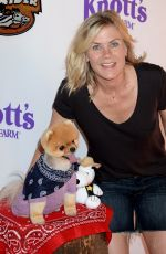 Alison Sweeney At Ghost Rider Rides Again Event At Knotts Berry Farm In Buena Park