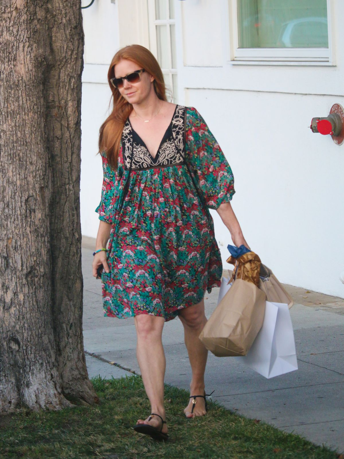 Amy Adams Shopping in LA