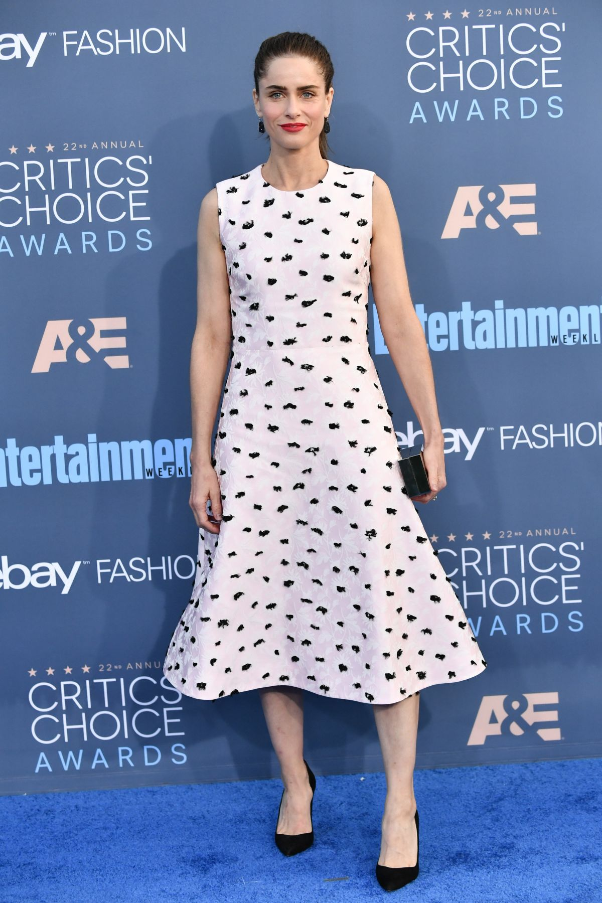Amanda Peet At The 22nd Annual Critics' Choice Awards in Santa Monica   amanda-peet-at-the-22nd-annual-critics-choice-awards-in-santa-monica-_10