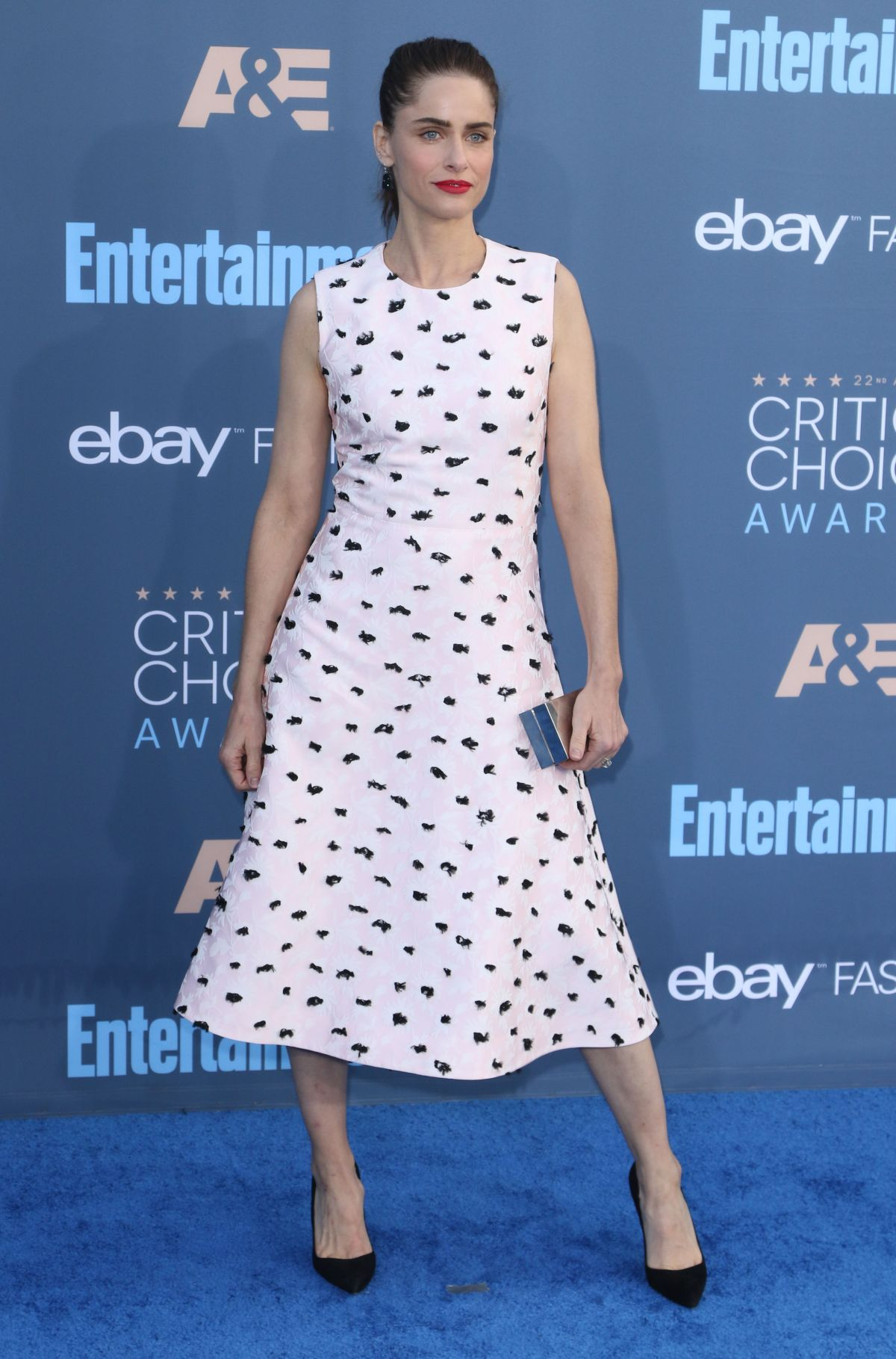 Amanda Peet At The 22nd Annual Critics' Choice Awards in Santa Monica   amanda-peet-at-the-22nd-annual-critics-choice-awards-in-santa-monica-_5