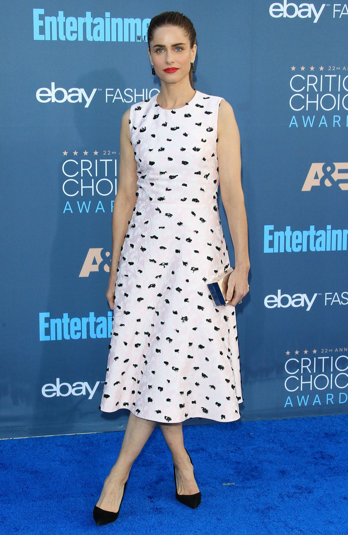 Amanda Peet At The 22nd Annual Critics' Choice Awards in Santa Monica   amanda-peet-at-the-22nd-annual-critics-choice-awards-in-santa-monica-_6