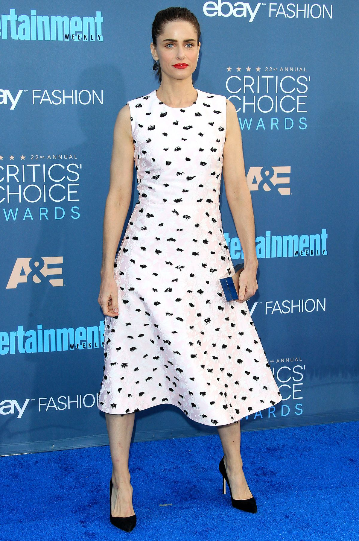 Amanda Peet At The 22nd Annual Critics' Choice Awards in Santa Monica   amanda-peet-at-the-22nd-annual-critics-choice-awards-in-santa-monica-_7