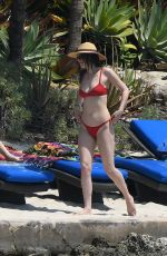 Dakota Johnson Wearing a bikini at a beach or pool in Miami
