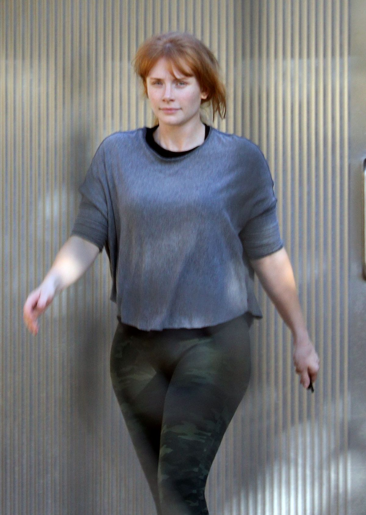 Pictures Bryce Dallas Howard nude (88 foto and video), Ass, Hot, Twitter, butt 2018