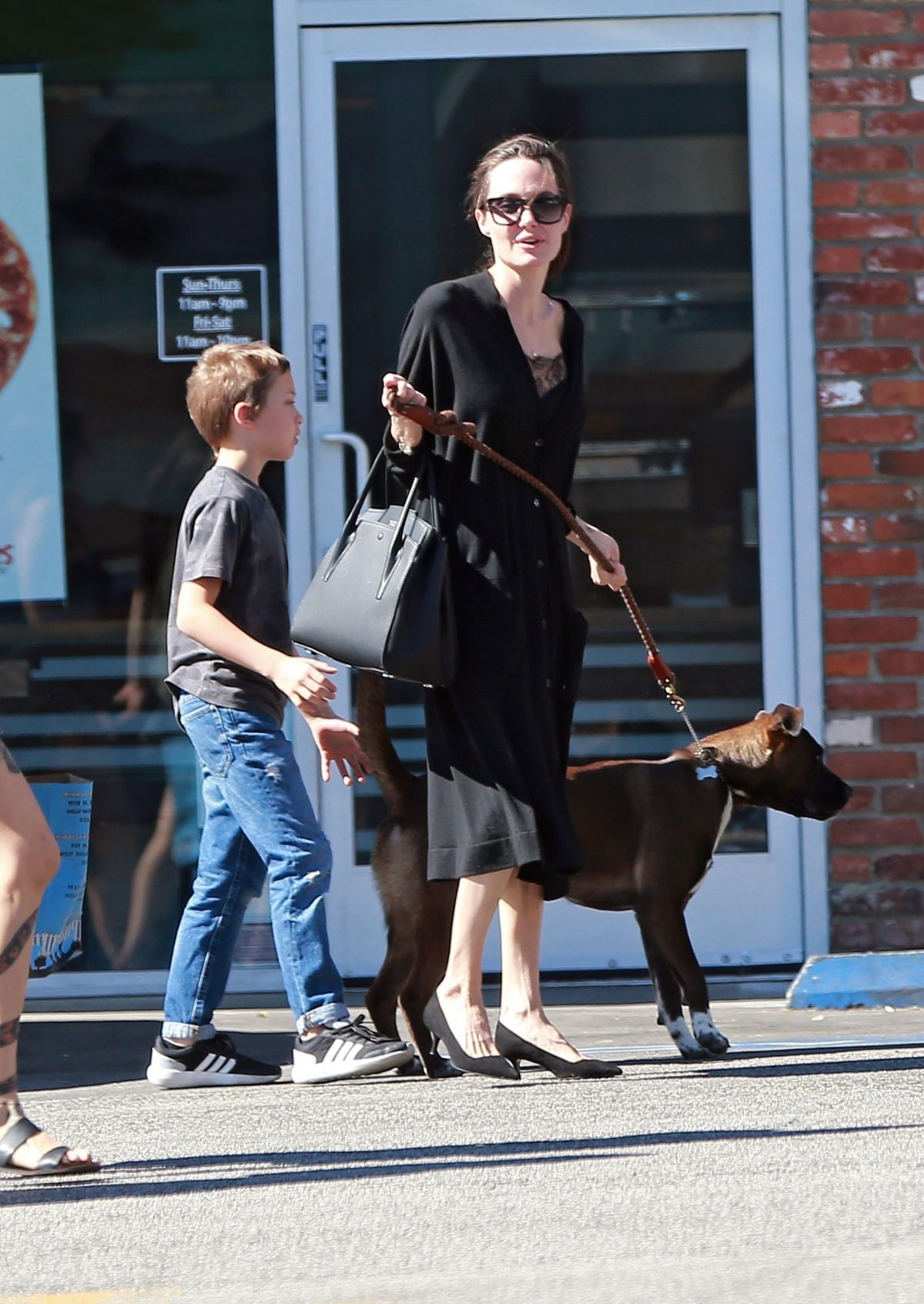 Angelina Jolie Takes her son and dogs to the pet store in Los Angeles