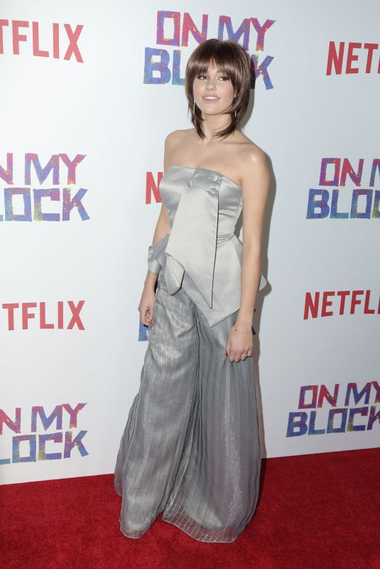 Ronni Hawk At Premiere of Netflix