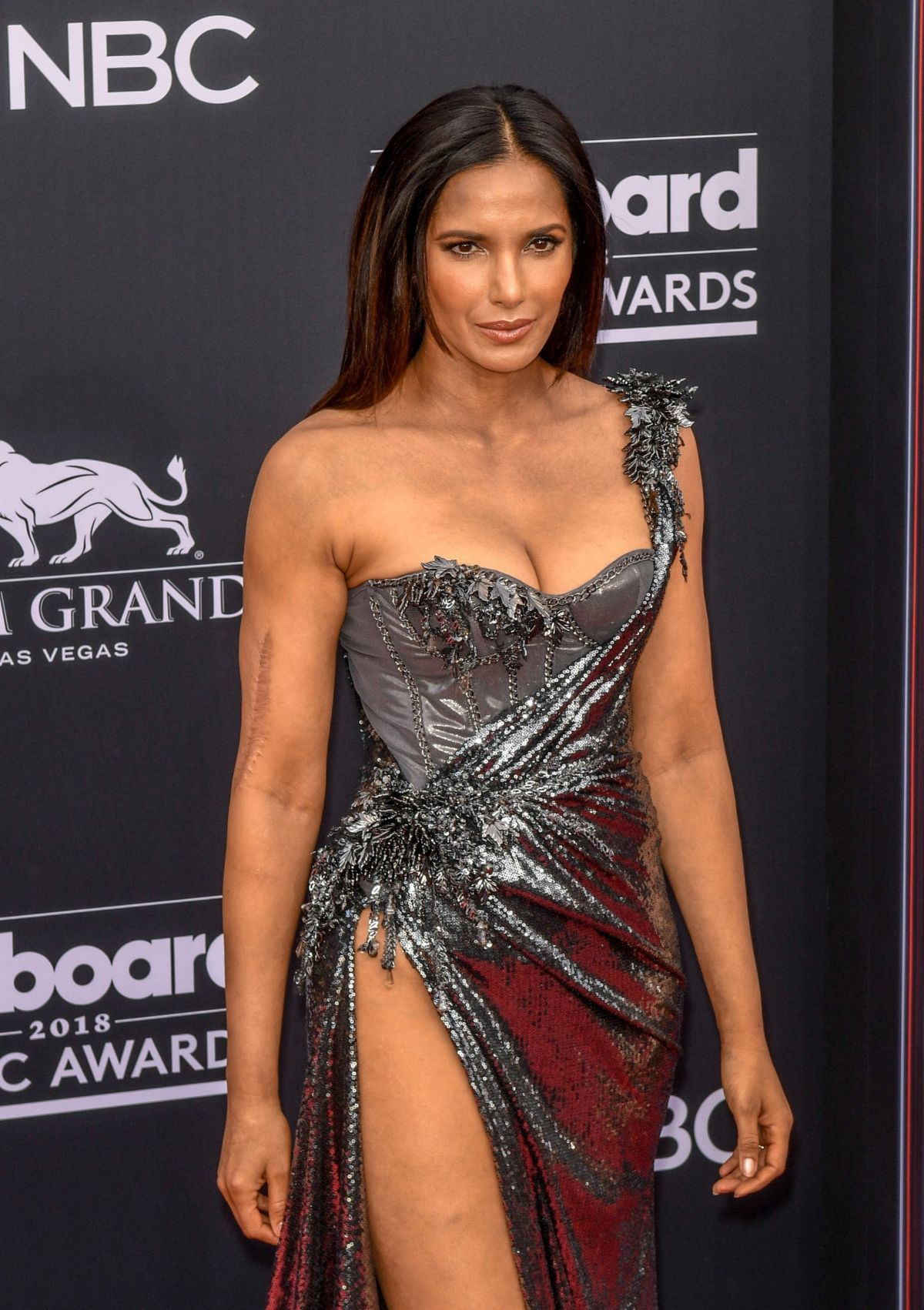 Padma Lakshmi At 2018 Billboard Music Awards At Mgm Grand Garden Arena In Las Vegas in addition Contact as well 5414439775 also Golf Umbrella 8 likewise Grounds V3927015. on studio with garden