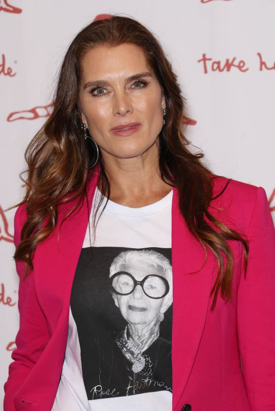Brooke Shields At Take Home a Nude Art Party and Auction New York Academy of Art Benefit