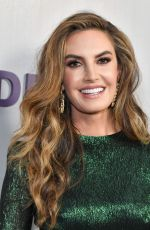 Elizabeth Chambers At Hammer Museum Gala, Los Angeles