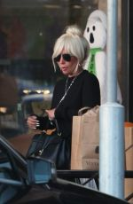 Lady Gaga Grocery shopping in Malibu