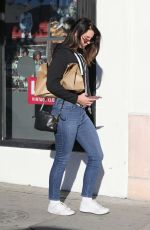 Lana Del Rey Runs into a friend while out shopping in Los Angeles