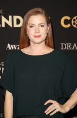Amy Adams At Deadline The Contenders in Los Angeles
