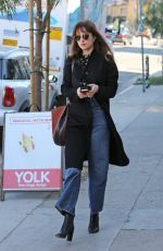 Dakota Johnson Heads for a lunch meeting in Los Angeles