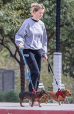 Ireland Baldwin Takes her two wiener dogs to the park in Santa Monica