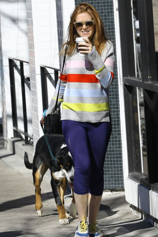 Isla Fisher Takes her dogs out for a walk in LA