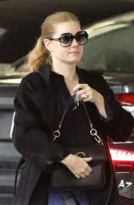 Amy Adams Stops by Whole Foods in Beverly Hills
