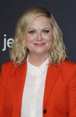 Amy Poehler At PaleyFest