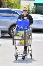 Vanessa Paradis Shopping at Whole Foods in Studio City