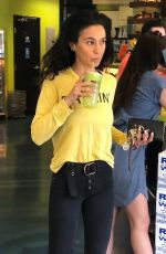 Emmanuelle Chriqui At Earthbar West Hollywood