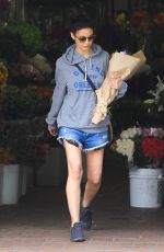 Emmanuelle Chriqui Out and about, Los Angeles