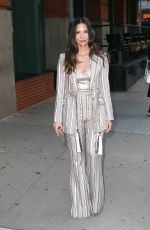 Olivia Munn Leaving The Greenwich Hotel in NYC