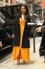 Regina Hall Looks classy in A orange dress and black coat as she steps out in New York