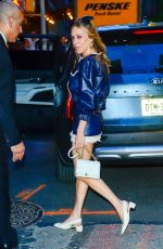 Chloe Sevigny Out in New York City