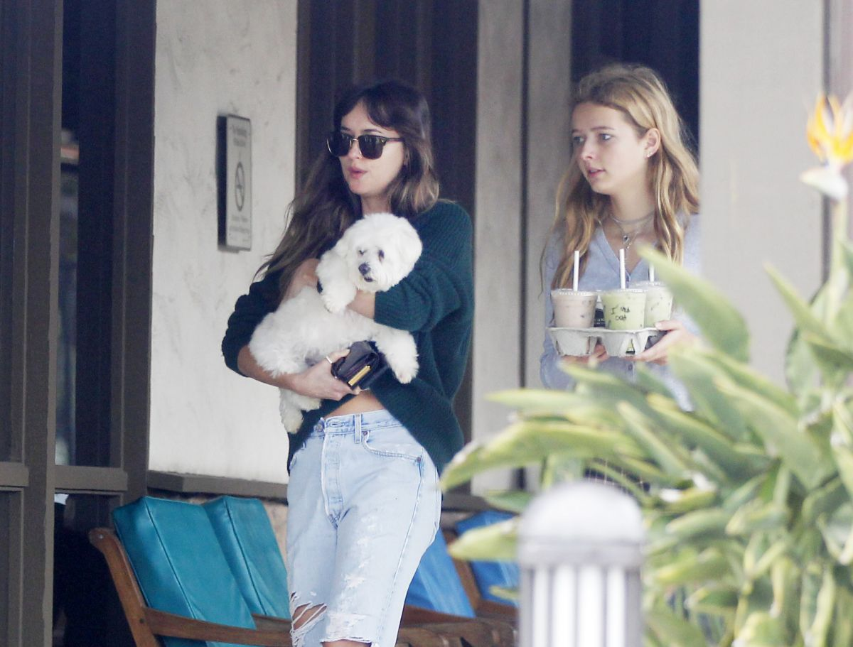 Dakota Johnson Grabs Some Ice Coffee And Drinks With Apple