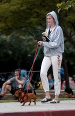 Ireland Baldwin Takes her pet miniature Dachshunds for a walk as she enjoys a healthy outing in Beverly Hills